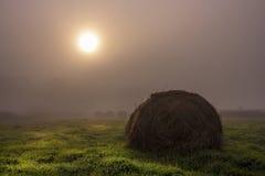 Предыдущее утро осени Стоковая Фотография