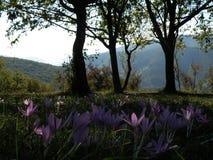 Предыдущие осень или поздним летом в горах Стоковые Изображения