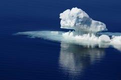 приантарктический льдед чисто Стоковые Фотографии RF