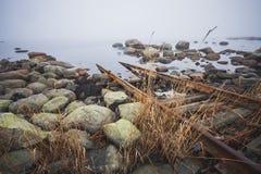 прибалтийское море свободного полета каменистое Стоковое фото RF
