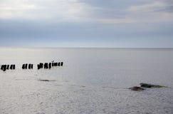 прибалтийская эстония около somethere tallinn моря Стоковая Фотография