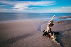 прибалтийская эстония около somethere tallinn моря Стоковая Фотография RF