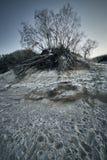 Прибалтийское побережье в зиме стоковые изображения