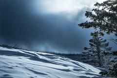 прибалтийское zelenogradsk зимы шторма России quay Из сини Стоковое Изображение RF