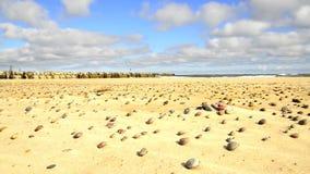 прибой Балтийского моря в Польше видеоматериал