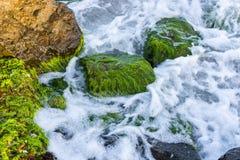 Прибой, волны и утесы моря Справочная информация Стоковое фото RF