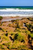 Прибой и брызг моря на пляже Стоковые Изображения
