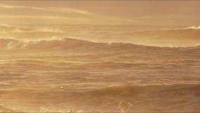 Прибой ломая на пляже видеоматериал