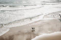 Прибой людей Активный и весьма спорт заниматься серфингом стоковая фотография rf