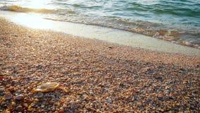 Прибой моря на выравнивать время акции видеоматериалы