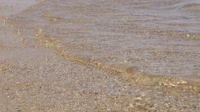 Прибой на песчаном пляже, прозрачные волны, конец-вверх видеоматериал