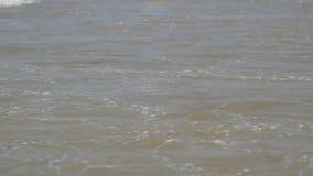 Прибой на пляже, небольшие волны моря видеоматериал