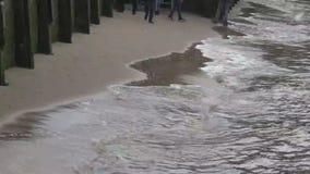 Прибой реки сток-видео