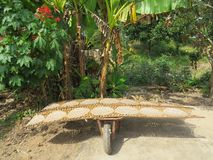 Прибор на котором блинчики риса высушены в солнце Провинция перепада Меконга стоковое изображение