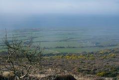 Прибрежная вересковая пустошь с туманным туманом и море в расстоянии Стоковое Фото