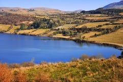прибрежная полоса озера Ирландии Стоковые Фото