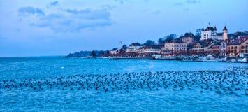 Прибрежная полоса озера Nyon, Швейцарии Стоковое Изображение RF