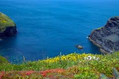 прибрежная прогулка Стоковое Фото