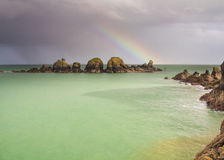 Прибрежная сцена на Sark Стоковые Изображения RF