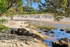 Прибрежная сцена на Whiritoa, Coromandel, Новой Зеландии Заводь возглавляя вниз к океану стоковые фото