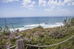 Прибрежная сцена скалами и пляжем на Del Mar, Сан-Диего, Cal Стоковое Изображение