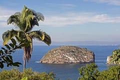 Прибрежное сценарное с островком стоковое изображение rf