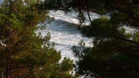 Прибрежные волны моря бьют против берега акции видеоматериалы