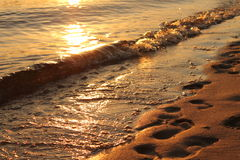 Прибрежные волны Стоковое Изображение RF
