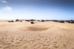 Прибрежные дюны в Maspalomas стоковые фотографии rf