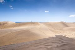 Прибрежные дюны в Maspalomas стоковая фотография