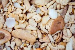 Прибрежные камни Стоковая Фотография RF