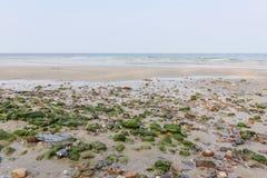 Прибрежные области заполнены с камнями Стоковые Изображения