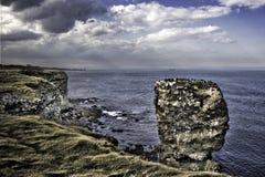 прибрежный взгляд souter маяка стоковая фотография rf