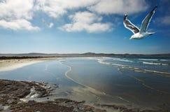 прибрежный взгляд Стоковые Фото
