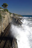прибрежный железнодорожный след Стоковое Изображение