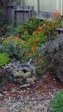 Прибрежный сад Стоковые Изображения