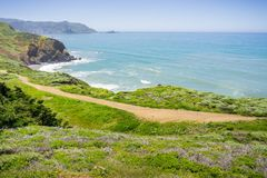 Прибрежный след на зеленых блефах Тихого океана, пункта Mori, Pacifica, Калифорния стоковые изображения rf