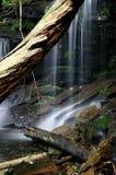 приватный водопад Стоковая Фотография