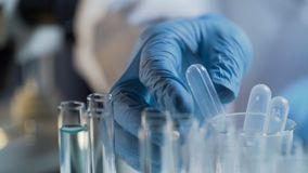 Приведение в исполнение ассистента лаборатории испытывает в лаборатории, рассматривая жидкостные вещества стоковые изображения