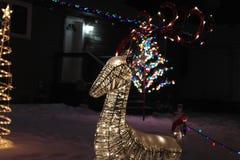 Приветственное восклицание рождества Стоковое Фото
