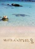 Приветственное сообщение написанное на белом песке, с тропическим морем развевает в предпосылке стоковое изображение rf