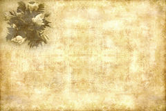 приветствие карточки ретро Стоковые Изображения RF