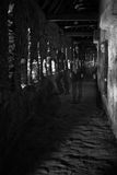 привидения Стоковое фото RF
