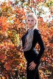 Привлекательная молодая женщина с длинный красивый представлять белокурых волос Стоковая Фотография RF
