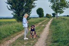 Привлекательная молодая женщина уча ее собаке Стоковое фото RF