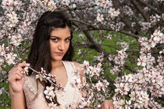 Привлекательная молодая красивая дама, наслаждаясь цветками цветения сливы весны стоковая фотография rf