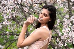 Привлекательная молодая красивая дама, наслаждаясь цветками цветения сливы весны стоковое фото rf