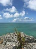 Привлекательности в Бермудских Островах стоковая фотография