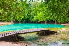 Привлекательность Krabi в джунглях Стоковые Фото