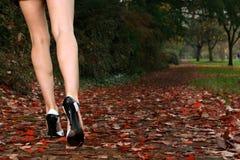привлекательные ноги Стоковые Фотографии RF